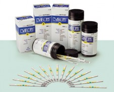 CYBOW 소변스틱 2종 (단백질, 잠혈)